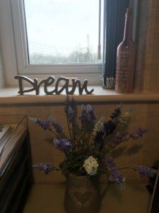 Dream and Write